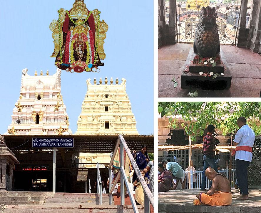 Maa Bhramaramba Shaktipeeth temple inside the campus