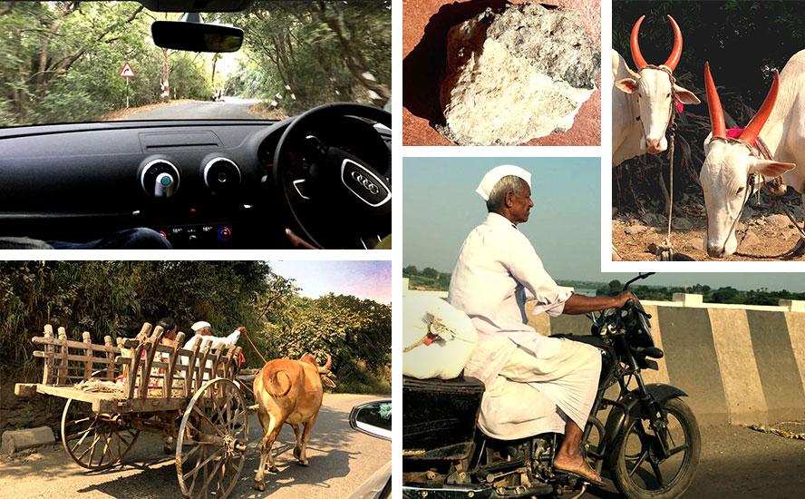 Shades of rural Maharashtra, zeolites and Khillari Bulls