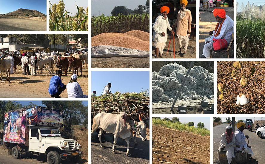 Cotton yields, farm barn and folk culture