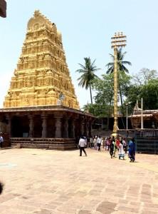 Shiv Dham Shri Mallikarjuna 5