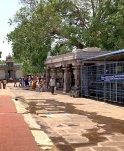 Shiv Dham Shri Mallikarjuna 3