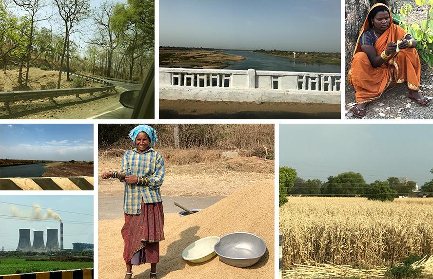 भोपाल से हैदराबाद तक - सागौन के निपाती वृक्ष, नर्मदा नदी, आदिवासी, तेलंगाना में धान की पैदावार