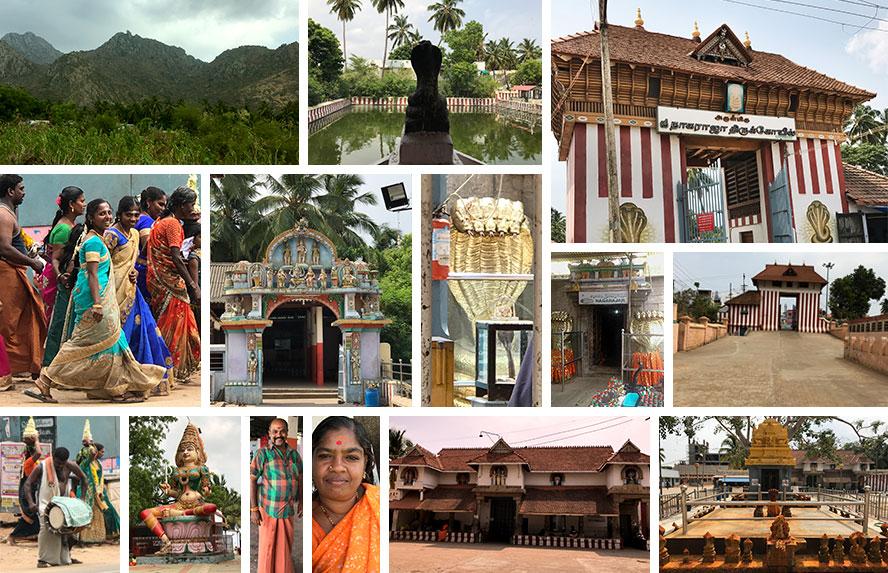 नागर कोइल (मंदिर) में प्रतिष्ठित स्वर्णाभ पंचशील स्वयंभू श्री नागराज, पुजारी एल. एम. चिदंबरम, द्वारपालकद्वय धर्मेन्द्रन नागराज और पद्मावती नागरानी, दक्षिणावर्ती महा मेरू महल की प्राचीर में संरक्षित मंदिर, ग्रामदेवी