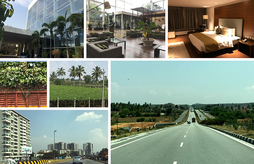 हैदराबाद से मदुरै तक होटल रेडिसन ब्ल्यू, दक्षिण की फसलें, बैंगलोर शहर