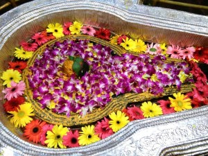 bhimashankar-shivotsav1