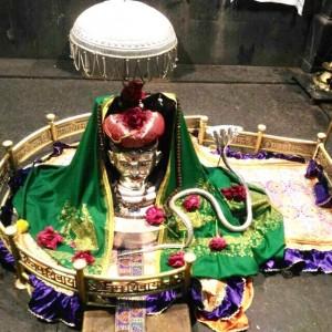 bhimashankar-shivotsav2