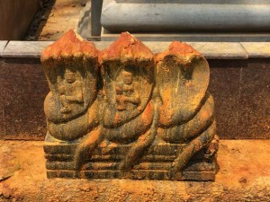 blog-rameshwaram-the-road-diaries16